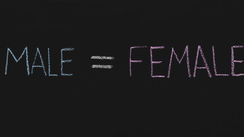 Juguetes y sexismo
